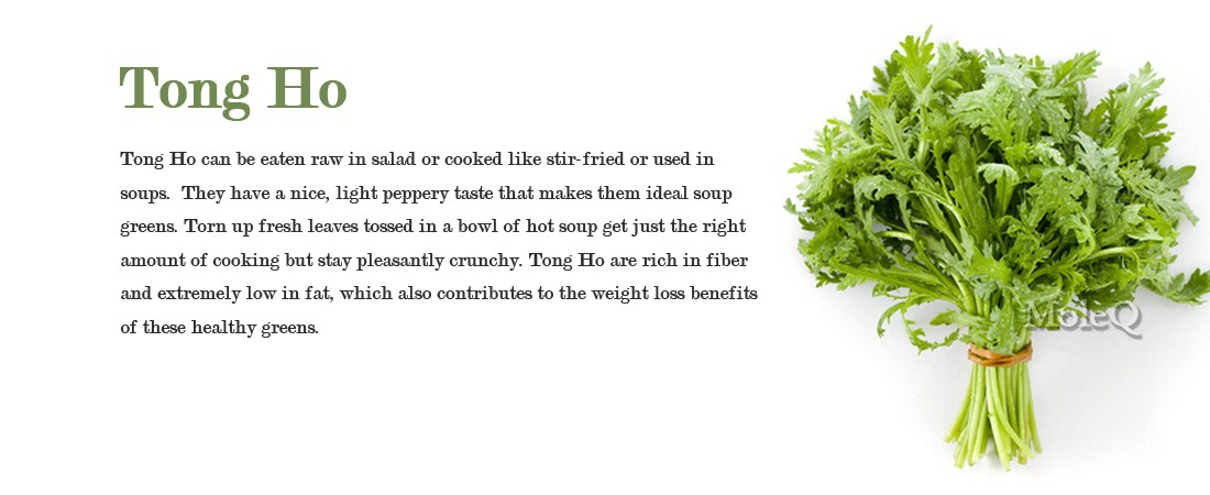 Tong Ho (Garland Chrysanthemum) – Moleq Inc. – Food Information